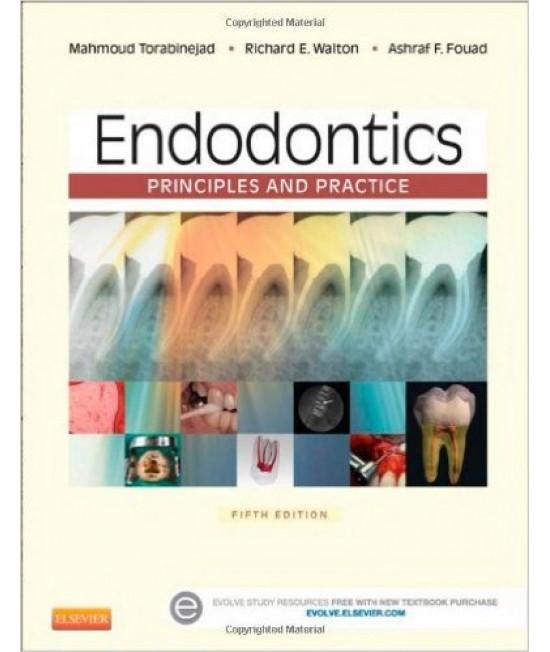 Endodontics 5th Edition