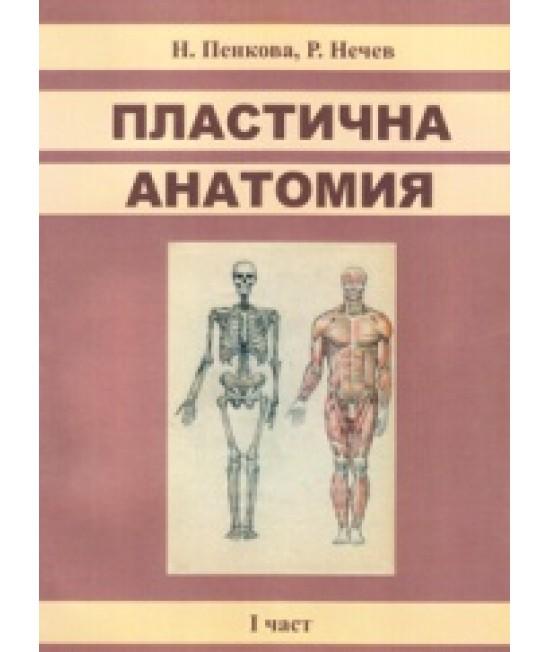 Пластична анатомия - I част