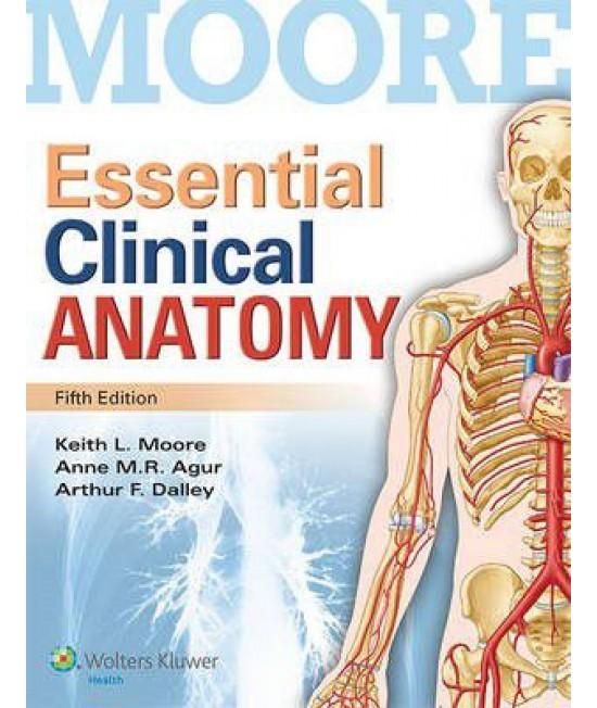 Essential Clinical Anatomy 5th Edition